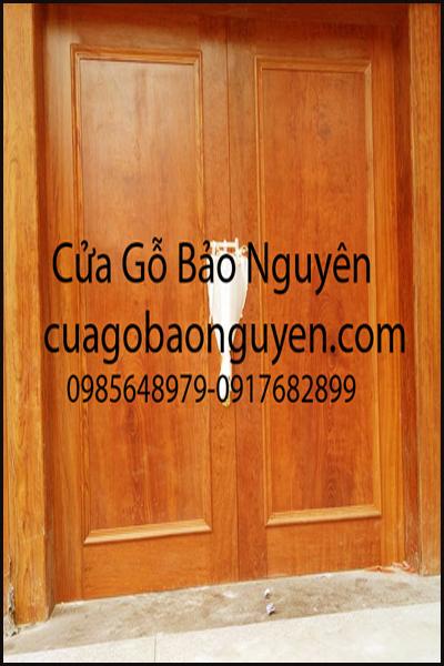 cửa gỗ hương đỏ 2 cánh 1 lá nẹp đắp M1